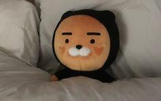 New toys aesthetic korean ideas Ryan Bear, Make My Day, Kakao Friends, Perfect Day, Estilo Rock, Korean Aesthetic, Orange Aesthetic, Cute Plush, Line Friends