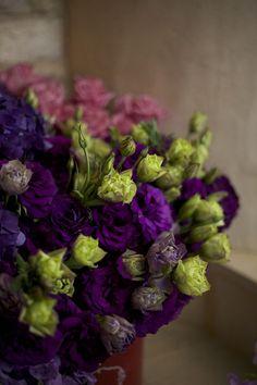 Lisianthus by Florabundance Plum Wedding, Spring Wedding Flowers, Dark Purple Flowers, Flower Names, Wedding Designs, Floral Arrangements, Floral Design, Floral Wreath, Palette