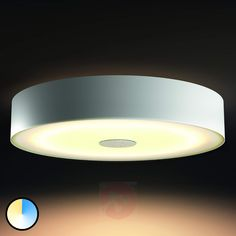 Philips Hue White Ambiance Fair Deckenlampe weiß - Hobbies paining body for kids and adult Wine Cellar Basement, Different Types Of Vegetables, Spot Led, Dream House Interior, Art Of Glass, Great Hobbies, Diy Videos, Discount Furniture, Lamp Light