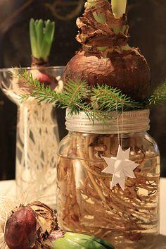 Idea Natale