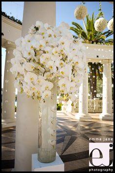 St. Regis Monarch Beach | Dana Point Wedding Photographer