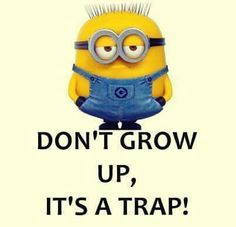 Minion Quotes Birthday Wishes Funny Minions Humor