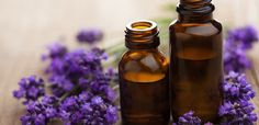 Lavender essential oil is one of the most commonly used essential oils in aromatherapy. While there are other essential oils such as eucalyptus and frankincense essential oil, lavender remains to be a tough choice when it comes to flowery scent. Essential Oils For Anxiety, Essential Oils Guide, Essential Oil Uses, Doterra Essential Oils, Young Living Essential Oils, Pure Essential, Lavender Oil Uses, Lavender Benefits, Home Remedies