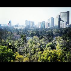 View from Chapultepec's Castle