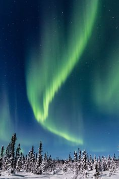 SEAN KURDZIOLEK PORTRAITS AND GALLERY. North Pole, Alaska. Come and visit our art gallery and take home a piece of Alaska. northern lights, aurora, north pole, sean kurdziolek photography, wall art
