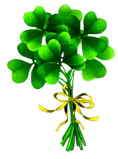 Bouquet of Clover st patricks day images Irish Greetings, St Patricks Day Wallpaper, Irish Images, Irish Quotes, Irish Girls, Irish Blessing, Irish Eyes, St Paddys Day, Luck Of The Irish