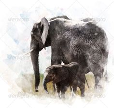 Watercolor Image Of  Elephants ...  animal, art, baby, clouds, colorful, digital, elephant, family, grass, idea, illustration, image, large, mammal, nature, painting, sky, trunk, tusk, walking, watercolor, wildlife, young