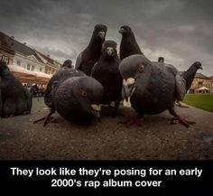 Rap album cover...