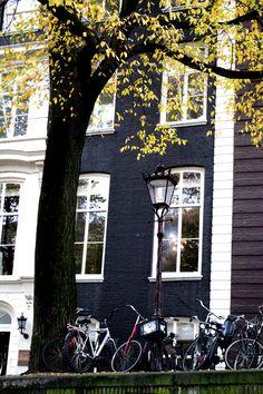 30/10/2014 @ Amsterdam. RP