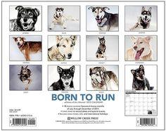 Born to Run 2015 Calendar