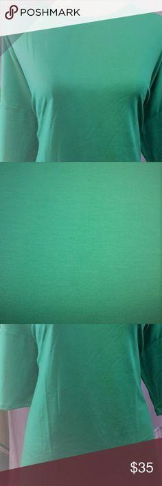 NEW LulaRoe Irma Tunic 3xl Spring Green NEW NWT❤️ LulaRoe's most awesome tunic in spring green.   Long Dolman Sleeves with hi lo long tunic length ~ Perfect for leggings SIZE=3XL (See Photo Size Chart) LuLaRoe Tops Tunics