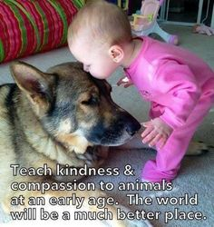 Kindness to #animals, starts as a #child.