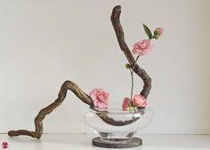 Zen-Images Ikebana Flower Art by Baiko with Pin-It-Button on FineArtAmerica
