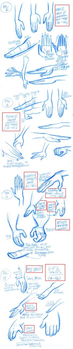 Stylized Hands model sheets by tombancroft.deviantart.com on @deviantART