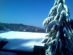 Snow view in Shimla, HP, India