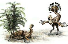 How Dinosaurs Grew The World's Longest Necks : Discovery News