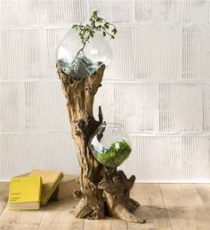 Main image for Dual Glass Bowls and Driftwood Sculpture