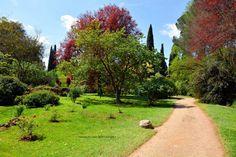 Valentina De Santis - http://www.valentinadesantis.com/the-gardens-of-ninfa-love-at-first-sight-part-ii/5859