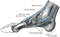 Painful Scar Tissue after Foot and Ankle surgery the Best Five Treatments