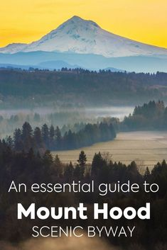 The Mt. Hood Scenic Byway is a great way to immerse yourself in the Oregon wilderness. Along the way, you'll visit part of the famed Columbia River Highway, and the lesser-known but totally adorable Fruit Loop. Here are our tips and suggestions for planning the perfect Oregon excursion!