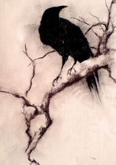 Charcoal Crow art | crow | Pinterest | Crows, Branches and A Tattoo