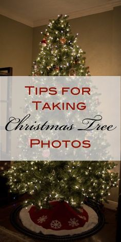 Tips for Taking Christmas Tree Photos | Blissfully Domestic