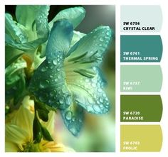 Paint colors from Chip It! by Sherwin-Williams by viola Thermal Springs