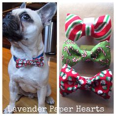 Holiday Dog Cat Pet Bow Ties & Bows Multiple Sizes by LavenderPaperHearts