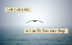 i wish i was a bird