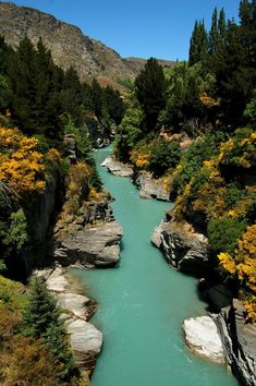 Shotover River, Queenstown New Zealand. Click on the image to check out the 10 most beautiful towns in New Zealand at TheCultureTrip.com. (Image via travelingcolors.net) New Zealand Honeymoon हमारे ब्लॉग में अधिक जानकारी https://storelatina.com/newzealand/travelling #sabonzealand #Nouvelle-Zélande #tshiabzealand #新西蘭