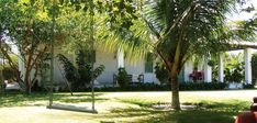 Pretty peaceful and harmoniously at the garden of Casa Marion. I bet you will love it there.