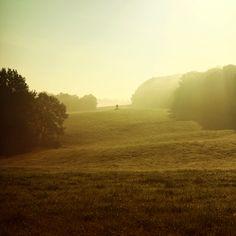 Favourite Places 1 by Matthias Heiderich, via Behance