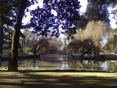 Laguna de Parque O'higgins,  Santiago de Chile.