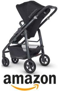 d343bd6e0aa The Next Big Thing in Best Strollers For Newborns
