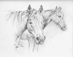 The Inquiry Original Graphite Pencil Drawing by JamesSkilesArt, $95.00