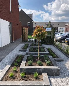 25 Design a front garden with ideas, tips, inspiration and plants, planters and gravel design layout Backyard Vegetable Gardens, Vegetable Garden Design, Small Garden Design, Diy Garden, Outdoor Gardens, Modern Landscaping, Backyard Landscaping, Garden Tiles, Back Gardens