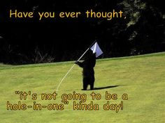 This would not deter a hacker from playing through. Funny Golf Pictures, Hole In One, Golf Humor, Thoughts, Pets, Movie Posters, Film Poster, Billboard, Film Posters