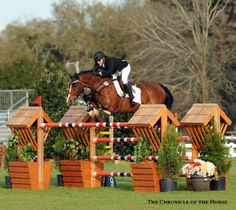Photo by Mollie Bailey At 19, Impulsive is still going strong, advancing to the jump-off in today's $25,000 Welcome Grand Prix with Scott Lenkart up. | The Chronicle of the Horse