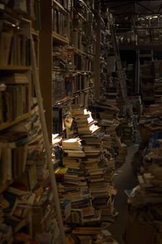 Books World of books Book aesthetic Old libraries Books to read Bookshelves - i Heart Classics - Slytherin, Hogwarts, Dream Library, Library Books, Library Corner, Brown Aesthetic, Aesthetic Pictures, Alexandria, Light In The Dark