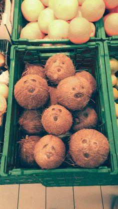 sad coconut