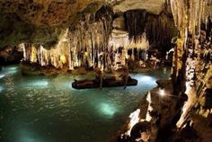 6. CAVERNS  You can swim or go on a kayak inside a cave, and see everything that it have