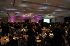 Get Ready to Party at the PAMM Gala!