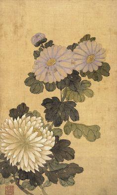 (Korea) Chrysanthemum by Shin Myeong-yeon brush watercolor. Korean Painting, Chinese Painting, Chinese Art, Japan Illustration, Chinoiserie, Korean Art, Art Club, Chrysanthemum, Japanese Art
