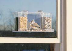 Duncraft 74405 Songbird One Way Mirror Window Bird Feeder Duncraft,http://www.amazon.com/dp/B001CS6O8Q/ref=cm_sw_r_pi_dp_bDmftb0XV28EJ0BC