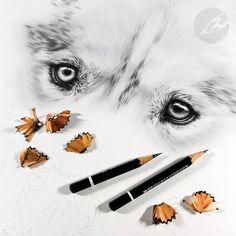 Artwork by Kerli Toode | Art by Kerli