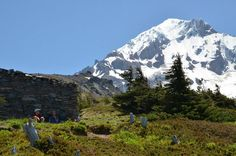 A hike to Mount Hood's west side