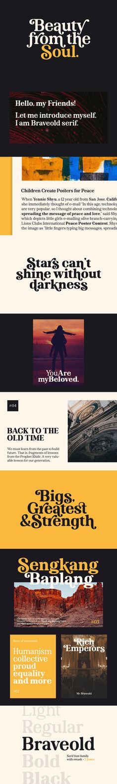 Braveold is a serif font family with swashes, making it multifunctional. It is inspired by classic and retro fonts in the 70 and comes with 5 weights which can Best Serif Fonts, Retro Font, Uppercase And Lowercase, Font Family, Graphic Design, Multifunctional, Ninja