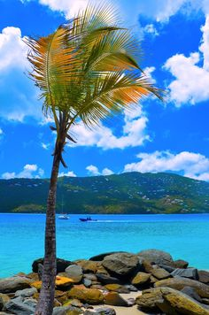St Thomas-/another destination I will be going to in march on the cruise! Can't wait!