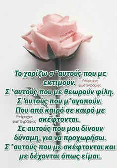 Good Morning Roses, Motivational Quotes, Inspirational Quotes, Greek Quotes, Make A Wish, Afternoon Tea, Wise Words, Life Quotes, Mary