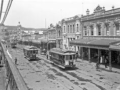 Trams travelling along Victoria Avenue, Wanganui, 1913, Frank Denton.  Courtesy Alexander Turnbull Library, Wellington, NZ.